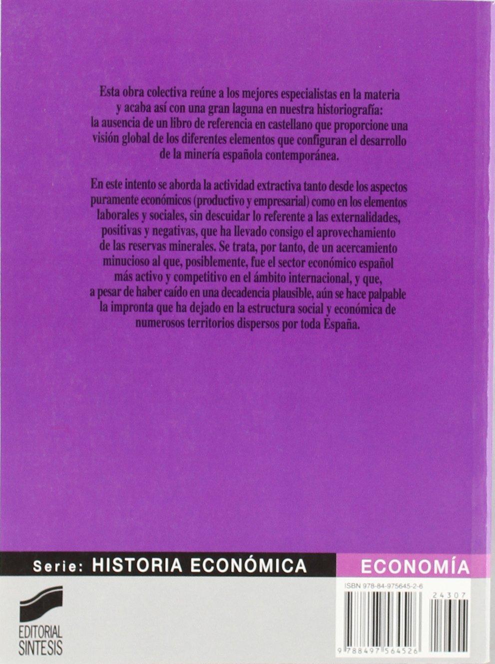 Minería y desarrollo económico en España: 7 Economía. Serie ...