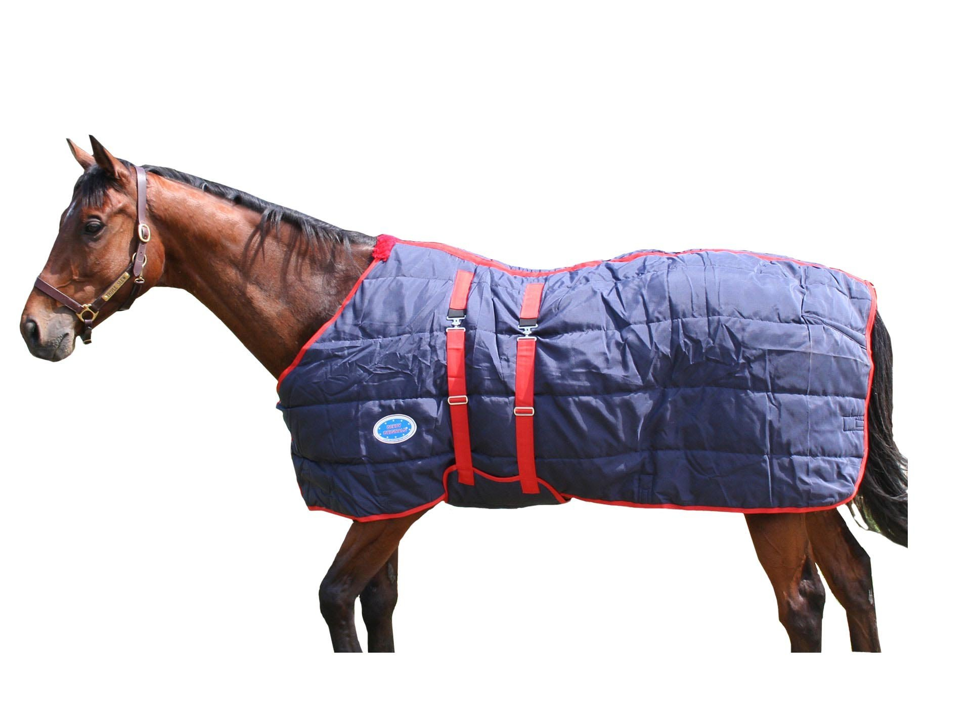 Derby Originals Closed Front Stable Horse Blanket with Belly Band, Navy, 78''