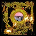 Hung at Heart (Lp) [Vinyl LP]
