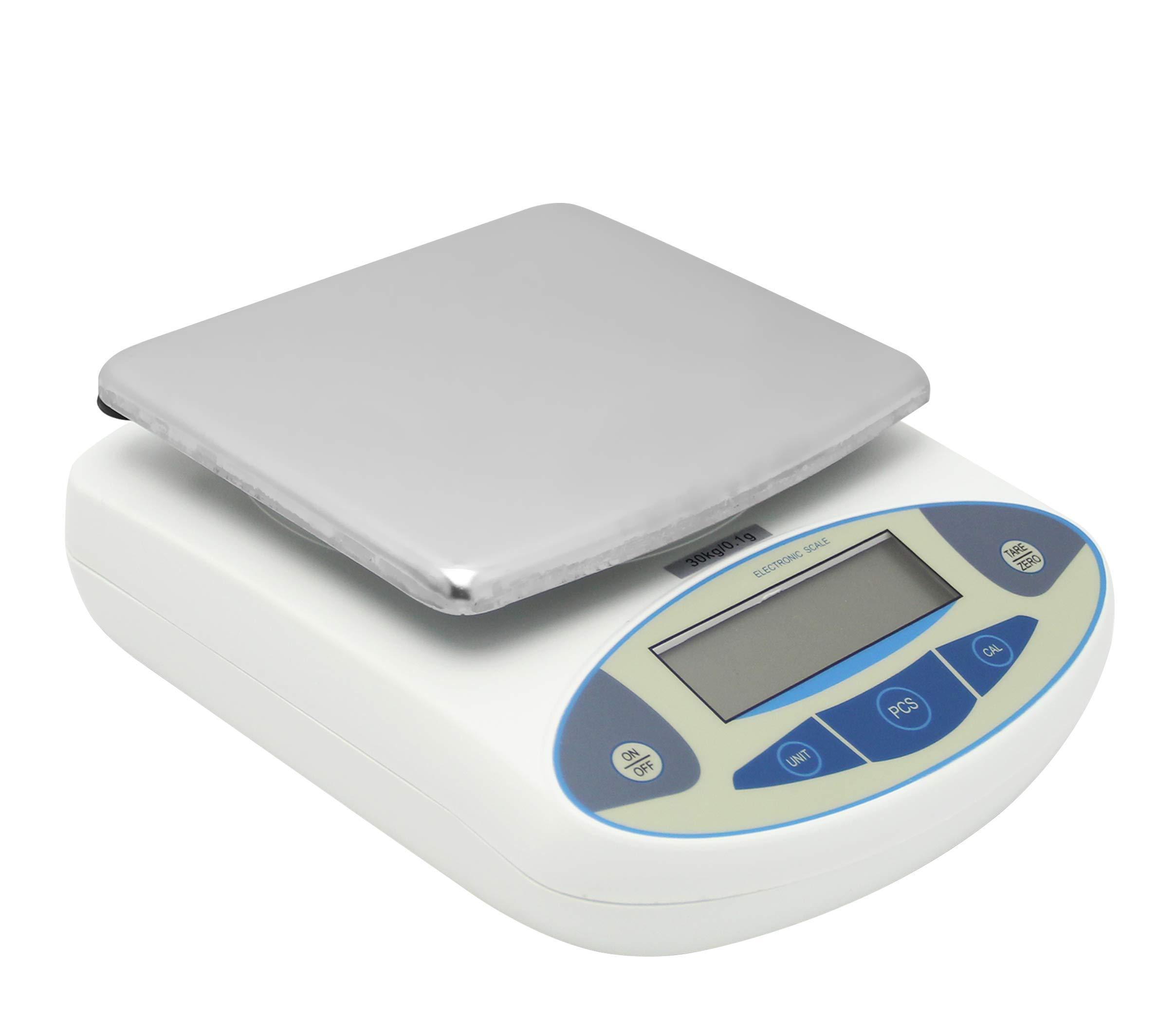 Precision Digital Balance Scale 30000g/0.1g (110V)