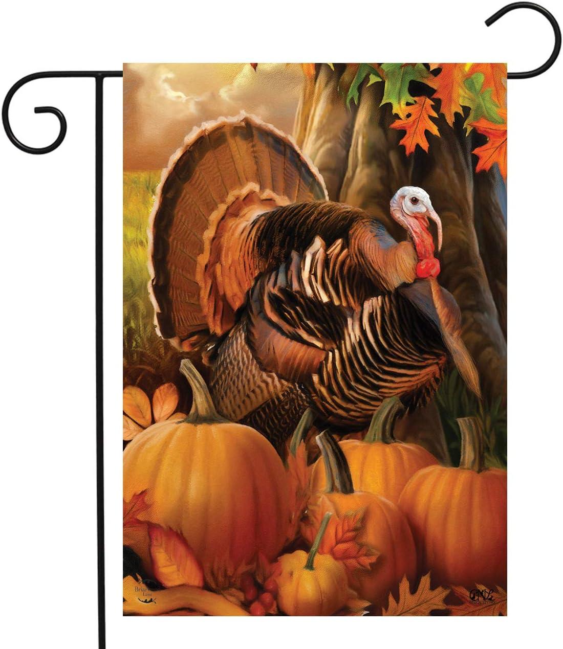 "Briarwood Lane Harvest Turkey Fall Thanksgiving Garden Flag Autumn Pumpkins 12.5"" x 18"""