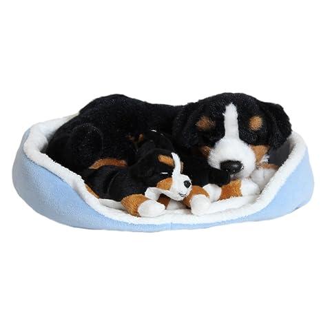 Con cama de boyero de Berna 23 x 19 cm, diseño de perro de peluche