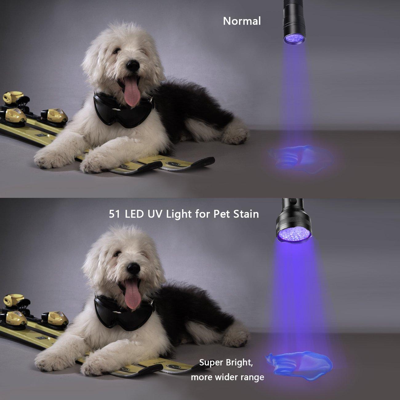 Blacklight Flashlights, 711TEK 51 LED Ultra Violet Flashlight 395-405 nm UV Detector Light for Dog Urine, Pet Stains and Bed Bug, Scorpion Hunting (1)