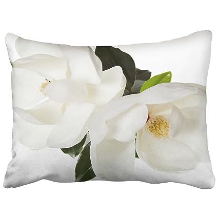 Amazon.com: emvency decorativo fundas de almohada conejo ...