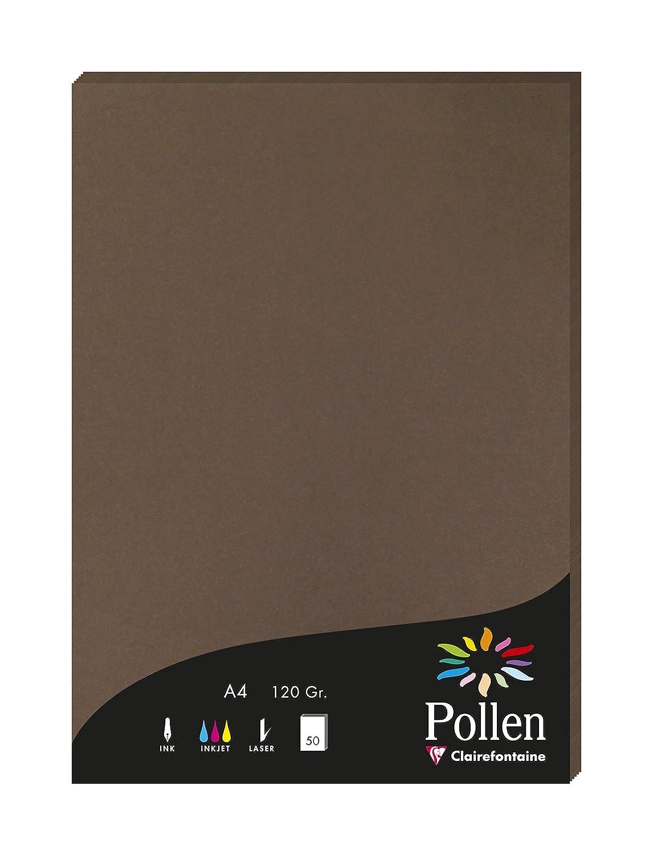 31 x 22 x 1.1 cm Rosa Clairefontaine confezione da pz 50 Pollen 4281C Carta A4