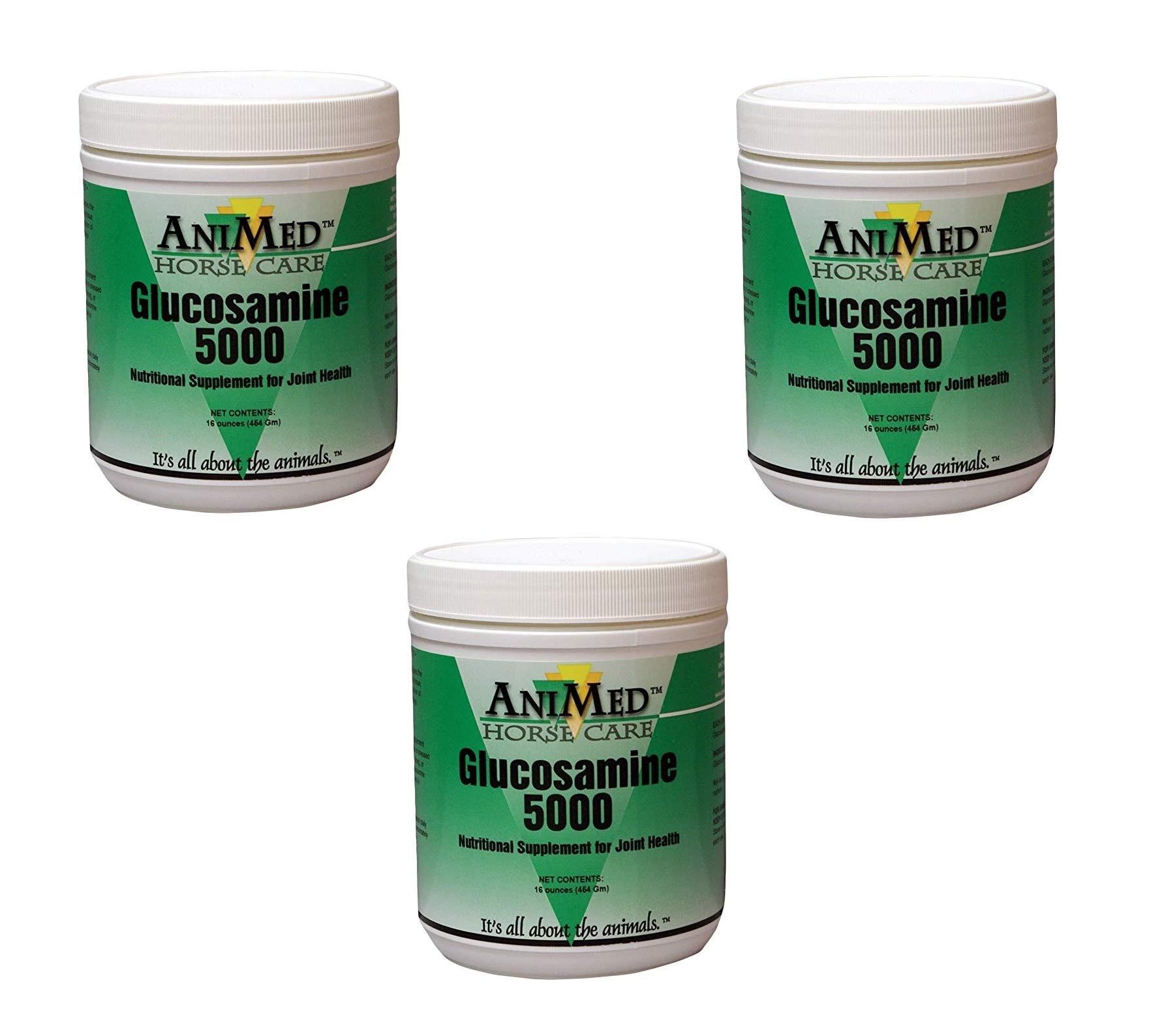 AniMed Horse Glucosamine 5000 Supplement, 16 oz (3 Pack)
