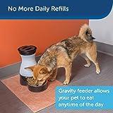 PetSafe Healthy Food Station - Pet Feeder for