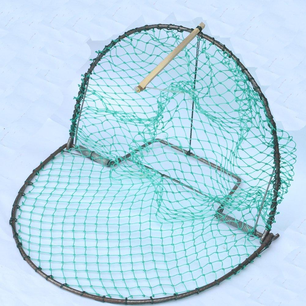 "Alemon 12"" Bird, Pigeon, Quail Humane Live Trap Hunting Bird Trap, with Trap Installation Instruction"