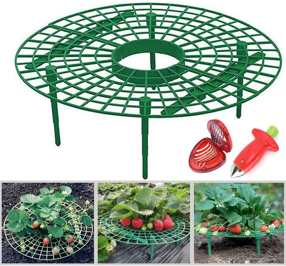 G-LEAF Strawberry Supports Keeping Fruit Elevated to Avoid Ground Rot with Huller and Slicer,10 Pack
