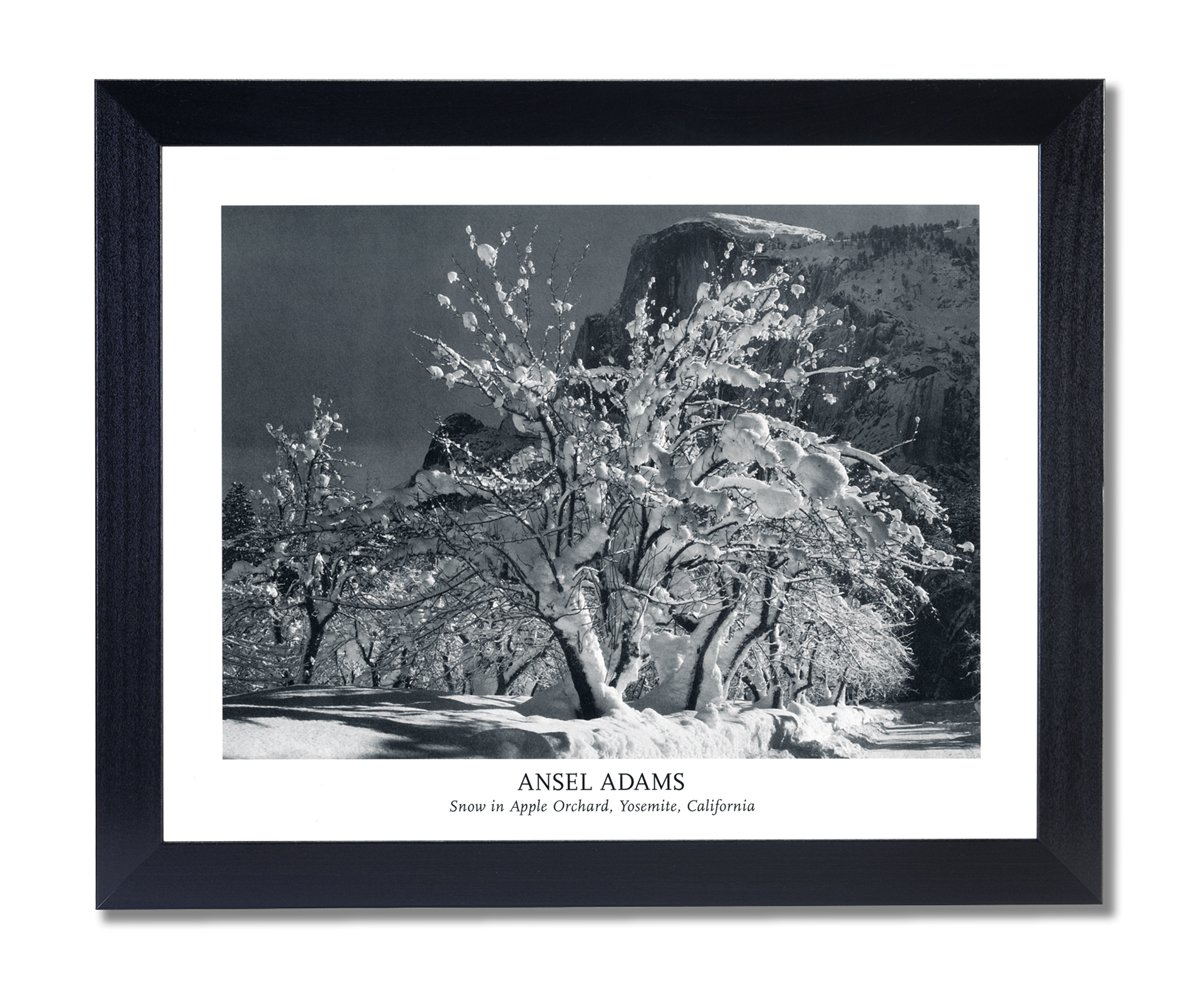Amazon.de: Massivholz schwarz gerahmt Ansel Adams Snow Apple Baum B ...