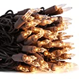 LIDORE Super Bright Clear Mini Christmas Tree Lights. Gift for Decoration. End to End Connection. 100 Count Bulbs on Brown Wi