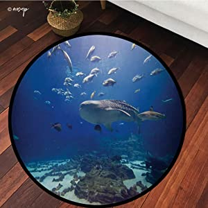 №01191 Round Area Rug Floor Kitchen Carpet, Ocean Whale, Photo from Atlanta Aquarium Various Fishes and Big Mammal, Cobalt Blue Slate Blue Seafoam, for Home Decor
