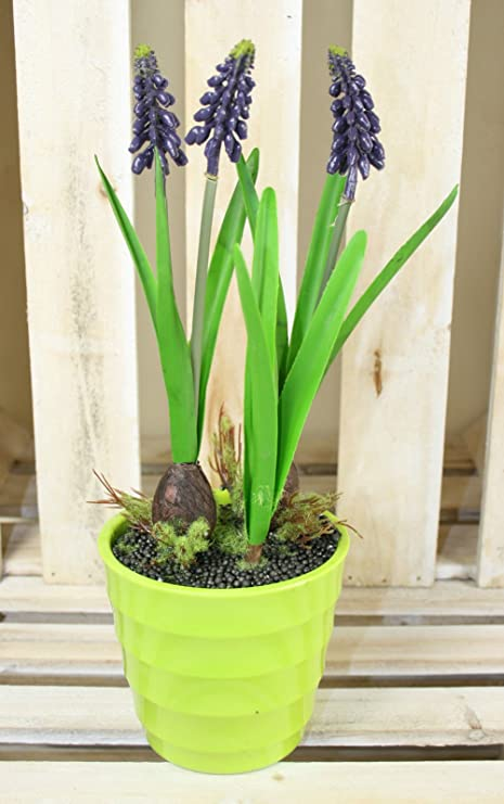 Artificial muscari potted plant grape hyacinth spring flowers for artificial muscari potted plant grape hyacinth spring flowers for home office mightylinksfo