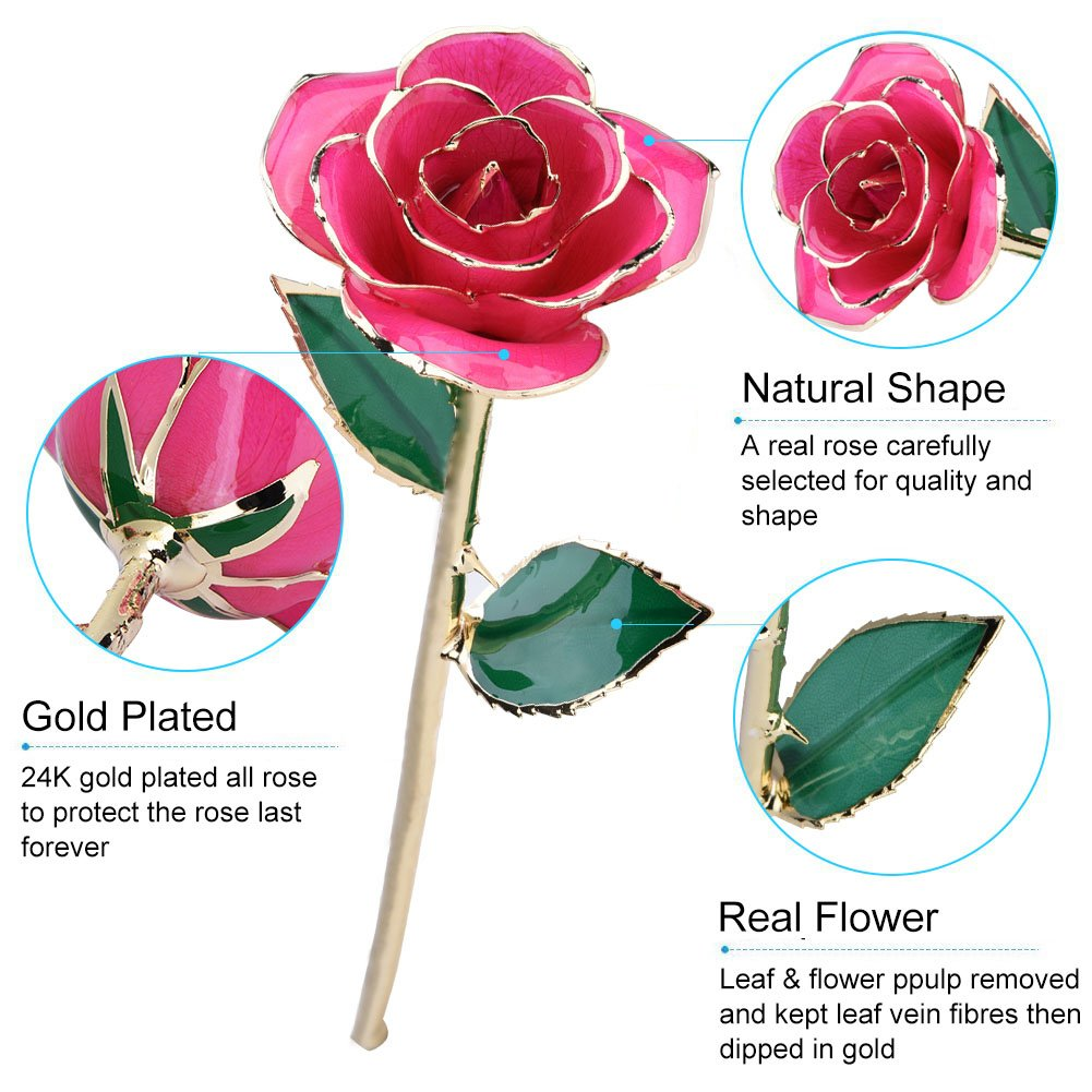 Amazon Gifts For Her Single Pink 24K Goldden Real Rose Dipped Flower Love Forever Long Stem With Thorns Foil Trim In Gold