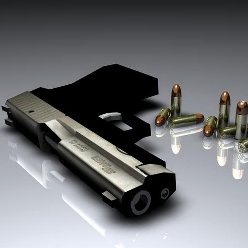 ZGC GAME Cool Guns Free product image