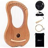Horse Lyre Harp,10 Metal String Bone Saddle Lye Harp Mahogany String Instrument with Tuning Wrench Extra one Set String Piezo