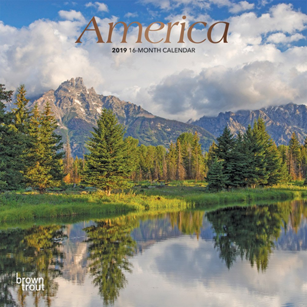 Read Online America 2019 7 x 7 Inch Monthly Mini Wall Calendar with Foil Stamped Cover, USA United States ebook