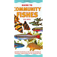 An Interpet Guide to Community Fishes (Fishkeeper's Guides)