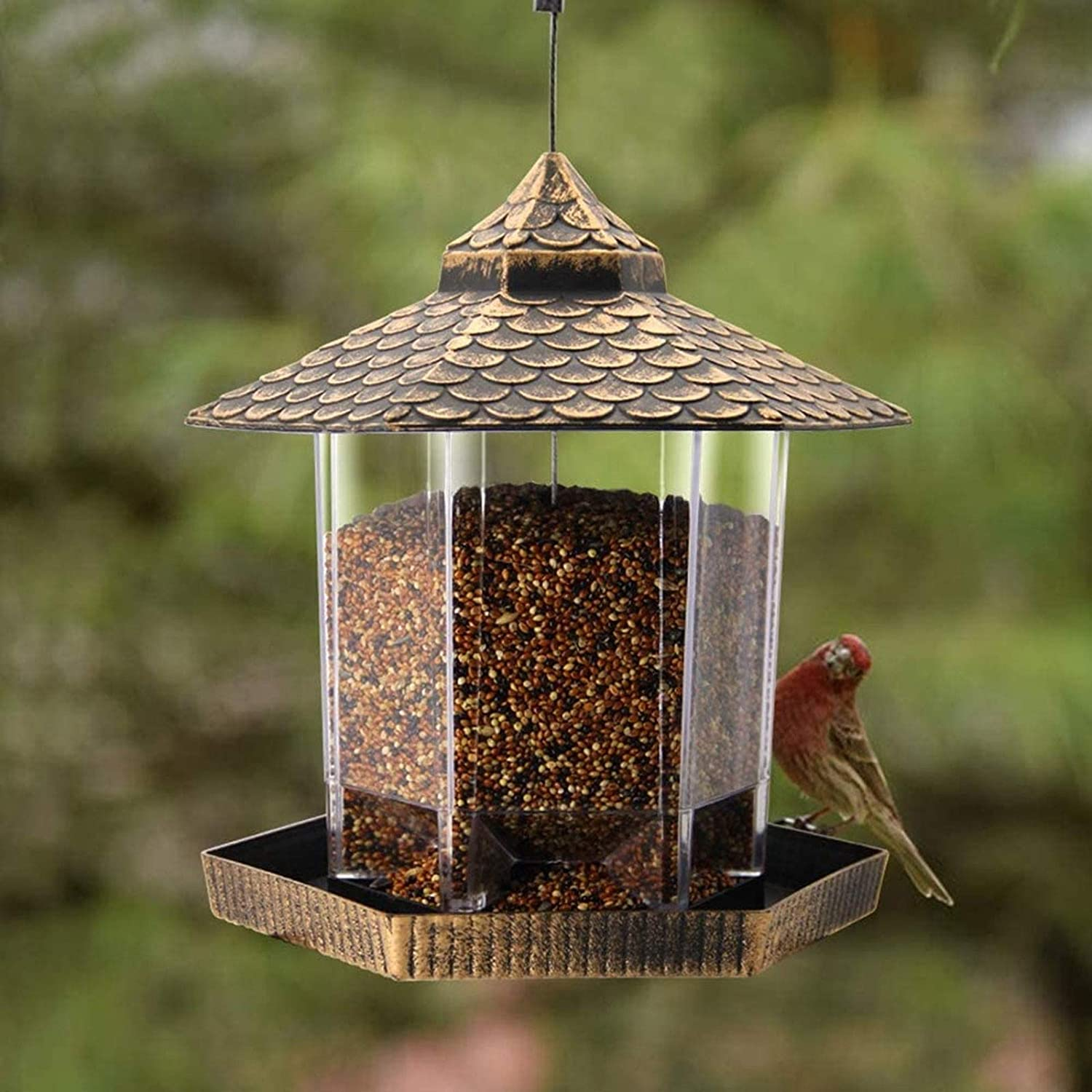 Twinkle Star Wild Bird Feeder Hanging for Garden Yard Outside Decoration, Hexagon Shaped with Roof : Garden & Outdoor