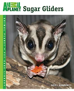 Sugar gliders the ultimate pet owners manual on all you need to sugar gliders animal planet pet care library fandeluxe Choice Image
