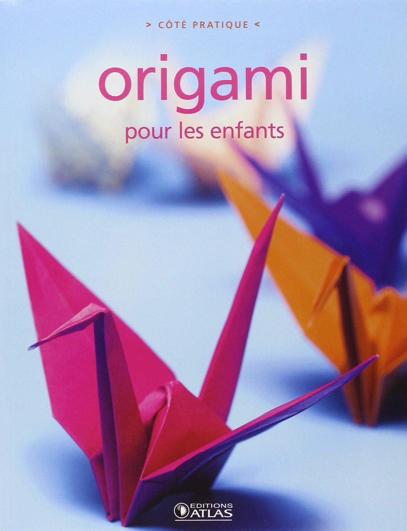 Origami Pour Les Enfants Amazon Ca Collectif Books
