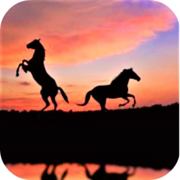 Amazon Com Horses Wallpaper Appstore For Android