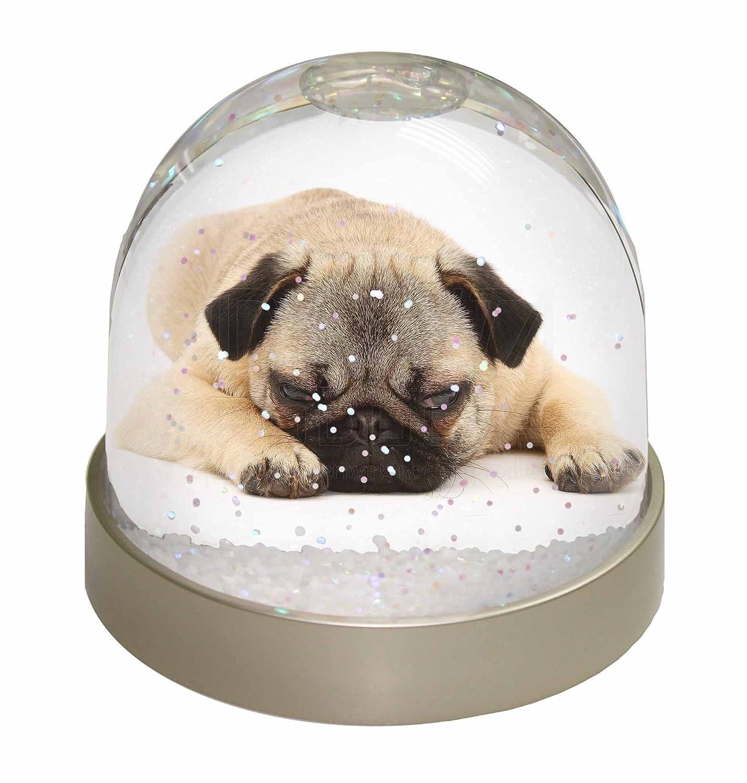 Advanta Pug Dog Snow Dome Globe Gift, Multi-Colour, 9.2 x 9.2 x 8 cm Advanta Products AD-P92GL