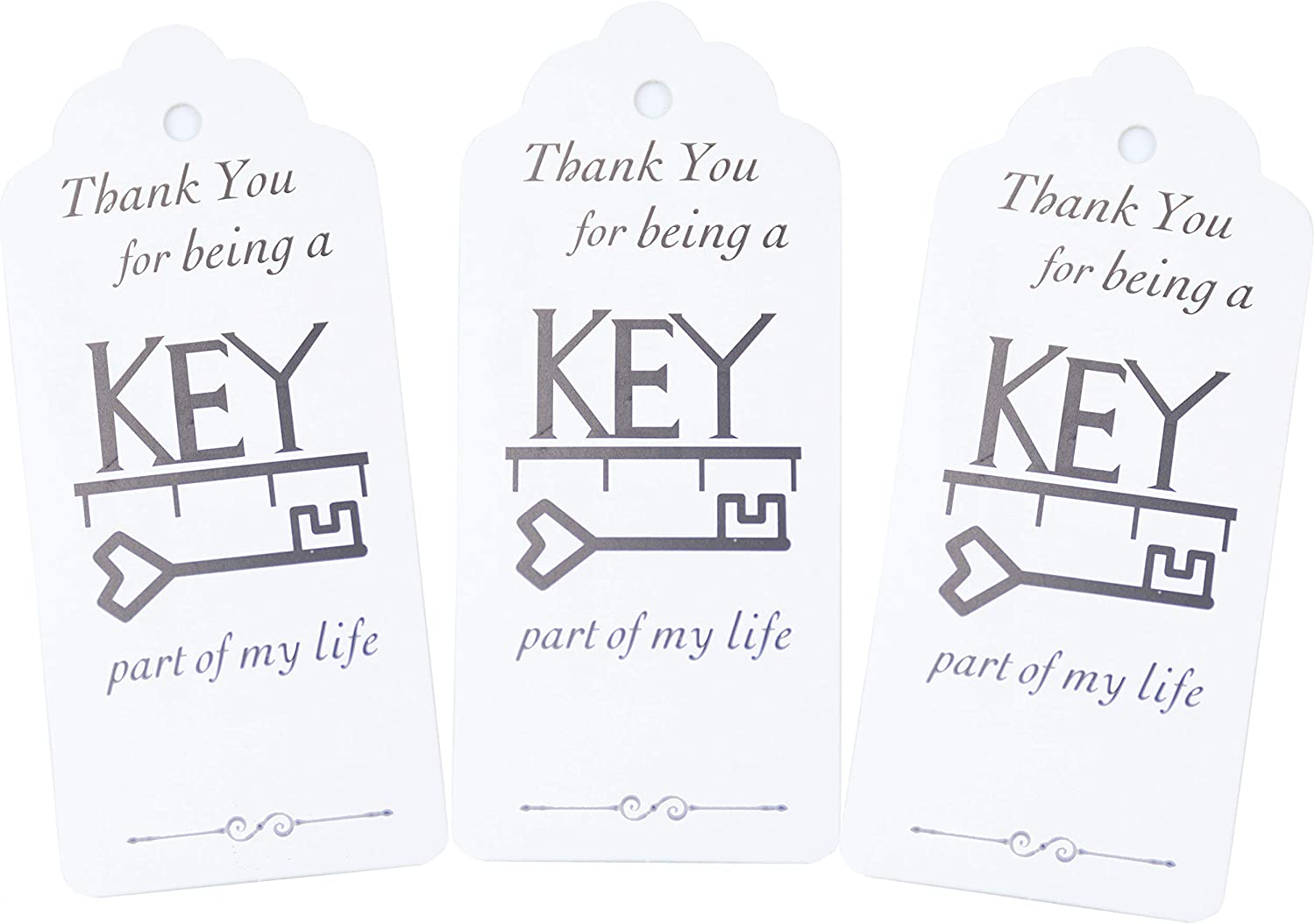 Makhry 50pcs Mixed Style Skeleton Vintage Key Christmas Party Favor Guest Souvenir Gift Set with Santa Tag and Keychain Antique Silver
