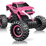 DOUBLE E RC Cars Newest 1:12 Scale Remote Control Car with Rechargeable Batteries and Dual Motors Off Road RC Trucks…