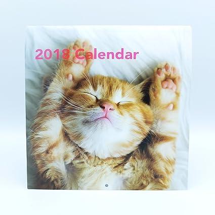 Calendario de pared Gatos 2018 marca Edicards con fotografías de las razas más populares. Impreso