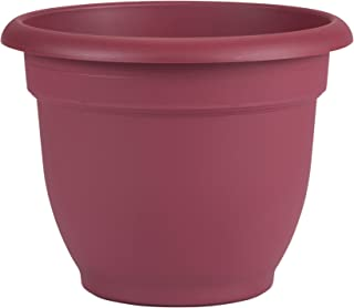 "product image for Bloem Ariana Self Watering Planter, 12"", Union Red (AP1212)"