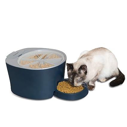Pet Supplies   PetSafe Six Meal Automatic Pet Feeder 7575bb063