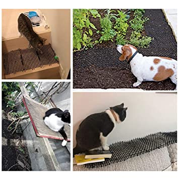 Amazon.com: Tapete de clavos para gatos y jardines, 9.8 ft ...