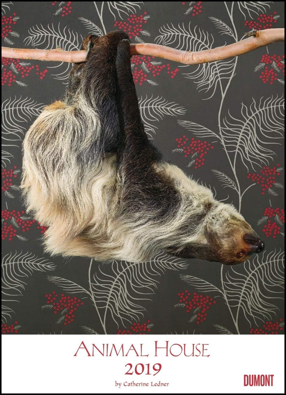 animal-house-kalender-2019-dumont-tier-kalender-foto-kunst-poster-format-49-5-x-68-5-cm