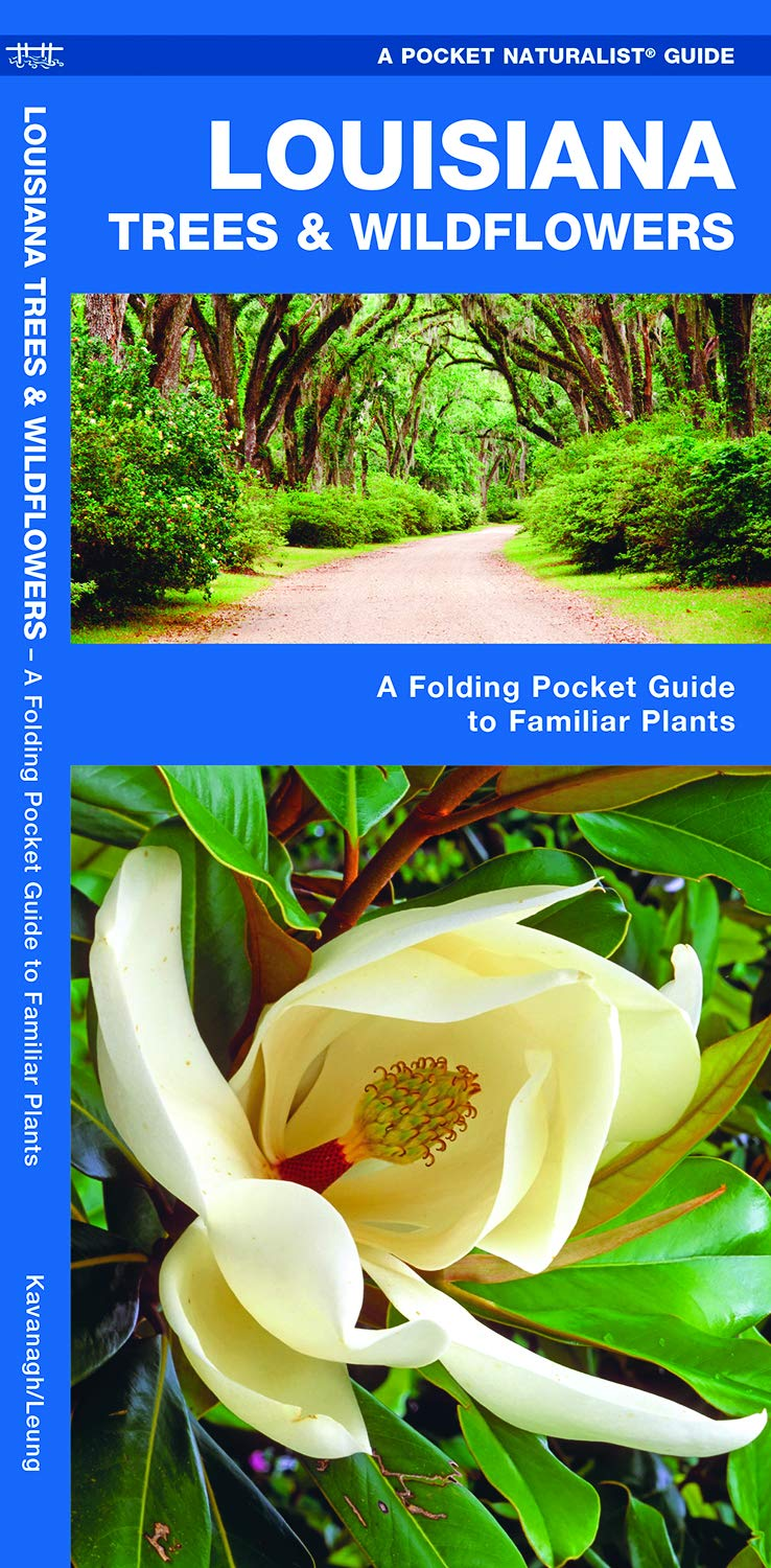 Louisiana Trees & Wildflowers: A Folding Pocket Guide to Familiar Plants (Pocket  Naturalist Guides): James Kavanagh, Waterford Press, Raymond Leung: ...
