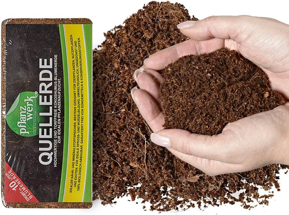 Pflanzwerk® Macetero Tierra Mantillo Tierra para macetas 20 Litro *100% ORGÁNICO* *100% Libre DE TURBA* *Producto DE Calidad*