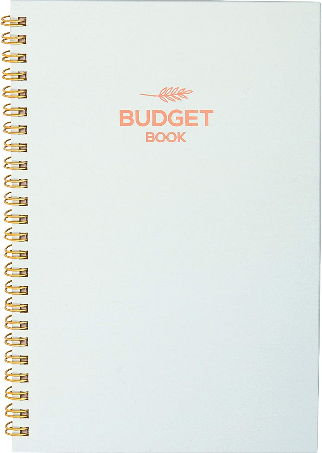 Monthly & Weekly Budget Planner Organizer – Financial Budgeting Book & Expense Tracker – Control Your Finances - Undated Start Anytime, 12 Months