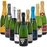 本格シャンパン製法の極上の泡9本セット((W0S904SE))(750mlx9本ワインセット)