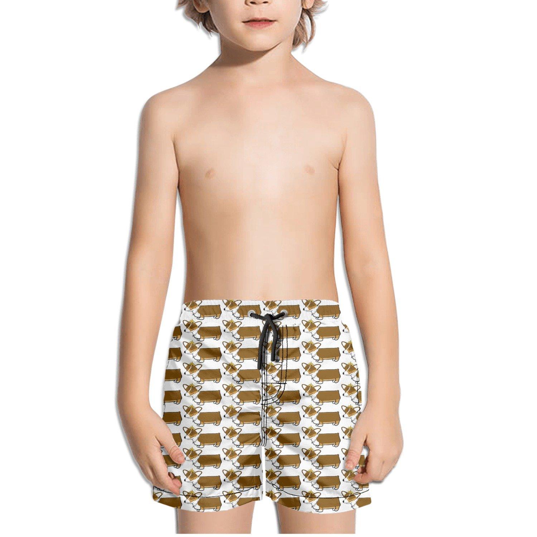 Corgi Tiara Crown Pattern Kids Boy's Fast Drying Beach Swim Trunks Pants