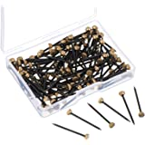 120 Pièces Image Hanging Pins Goupilles de Tête Pins Nails Picture Pins Brass Cintres Mur Pins 1 Pouce de Longue avec Boîte de Rangement en Plastique