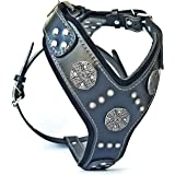 Bestia Maximus Silver Big Dog Leather Harness …
