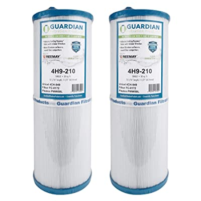 2 Guardian Pool Spa Filter Replaces Unicel 4CH-949 Spa Rising Dragon 4CH-949 FC-0172 FC0172 PWW50L : Garden & Outdoor
