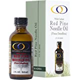 Wild-crafted Red Pine Needle Oil (2oz)