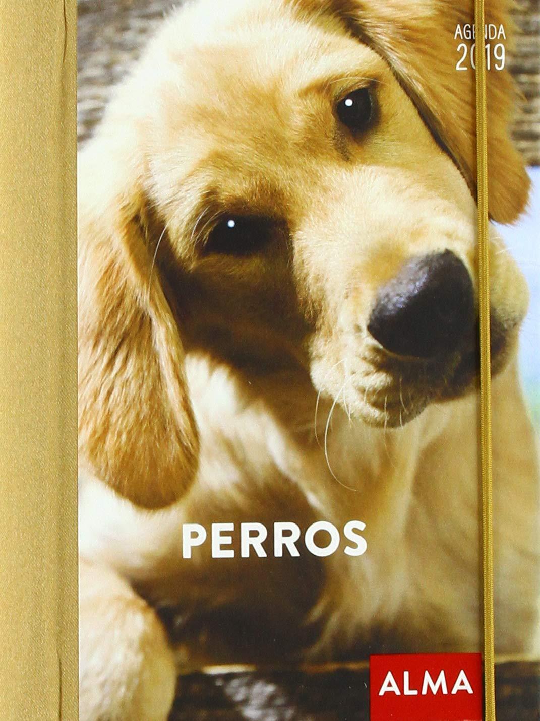 Alma Perros - Agenda: Vv.Aa: Amazon.es: Oficina y papelería