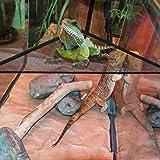 AUOKER Lizard Hammock, Breathable Mesh Reptile
