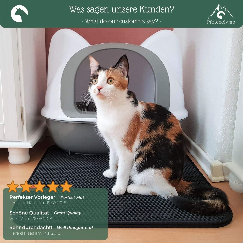 Pfotenolymp® Estera de primera calidad para gatos - Estera extra grande para bandejas sanitarias para gatos - Estera de doble capa para gatos/estera sanitaria - Estera para gatos: Amazon.es: Bricolaje y herramientas