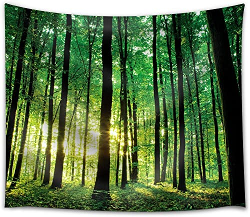wall26 – Green Forest with The Sunlight Peeking Through The Trees – Fabric Tapestry, Home Decor – 68×80 inches