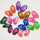 Hixixi 20pcs Pet Dog Cat Beautiful Colorfully Butterfly Hair Bows Puppy Hair Accessories with Rubber Bands