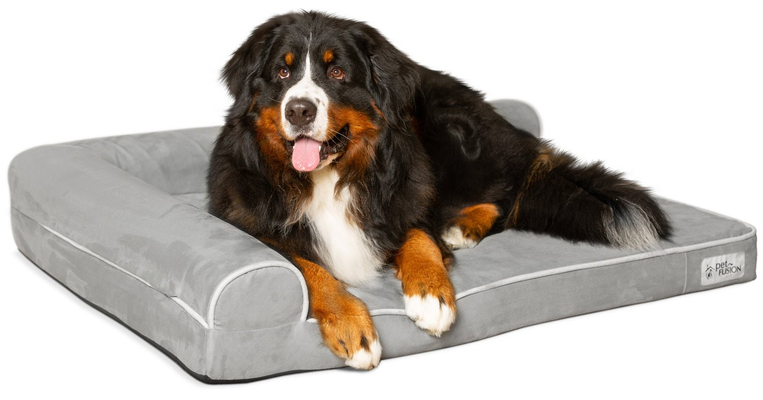 PetFusion XL Dog Bed w/ solid orthopedic Memory Foam, Waterproof foam liner, and YKK zippers. Easy clean, removable micro-suede cover