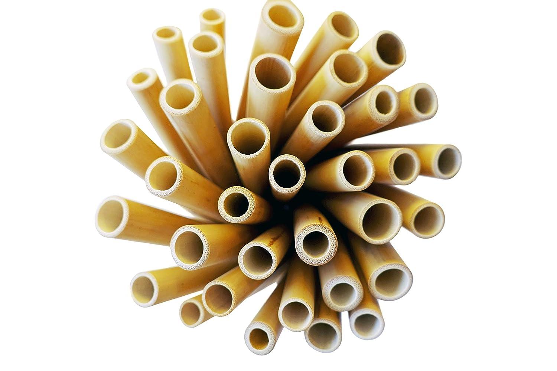 100/% vegetale e Naturalmente Testata da Laboratorio. Tropical Freaks/® 12 cannucce di bamb/ù con Spazzola di bamb/ù per Una Lunga Durata